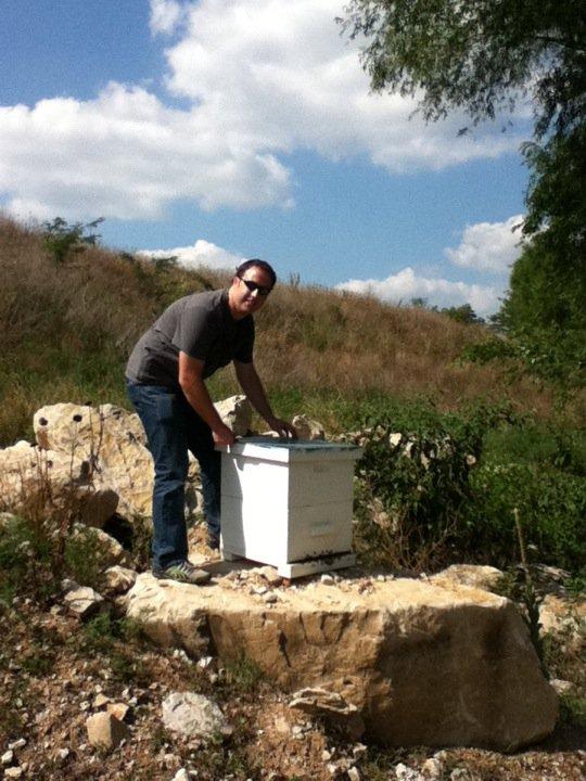 Matt and bee hives